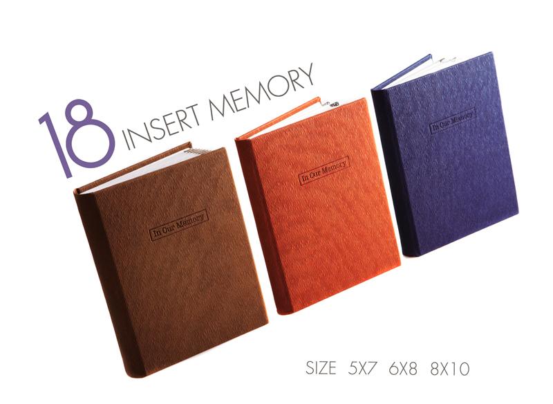 insert memory_